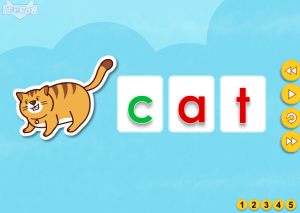 cat flashcard